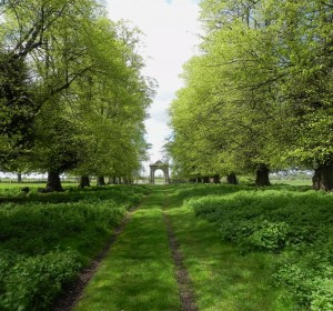 The avenue leading to one of Charlecote's gates
