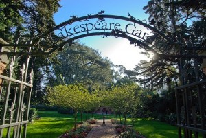 The Shakespeare Garden, Golden Gate Park San Francisco