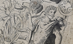 Detail from the 1597 title page of Gerarde's Herball